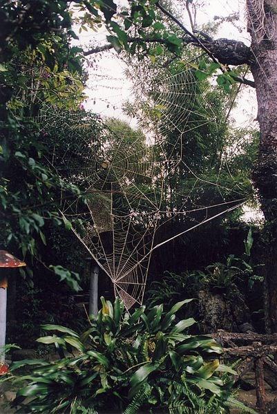 Hang-Nga-villa  (3)