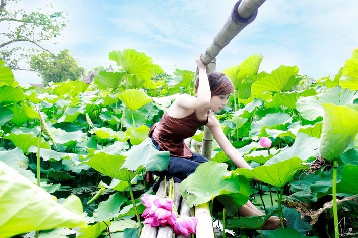 Vietnam Beauty Via Lotus Flower Lakes In The Whole Country Part 1 (3)