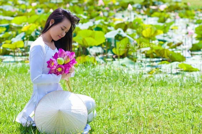 Vietnam Beauty Via Lotus Flower Lakes In The Whole Country Part 1 (6)