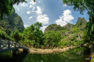 Dance Cave- Harvested Rice Fields of Tam Coc, Ninh Binh
