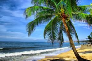 Mui Ne Immersed Blue Sea, White Sand, Golden Sunshine
