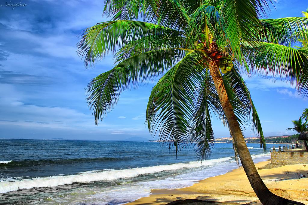Mui Ne Immersed Blue Sea, White Sand, Golden Sunshine (1)