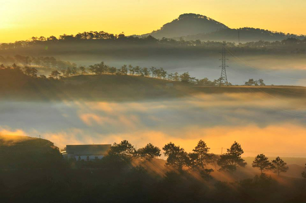 STUNNING BEAUTY OF DA LAT DAWN  (1)
