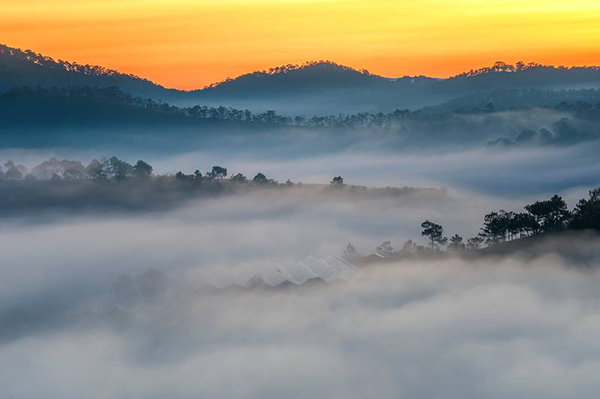 STUNNING BEAUTY OF DA LAT DAWN  (11)