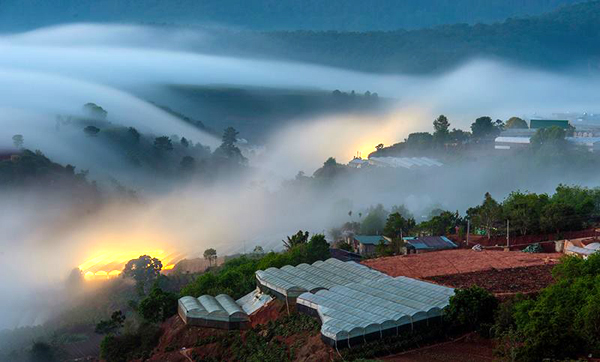 STUNNING BEAUTY OF DA LAT DAWN  (12)