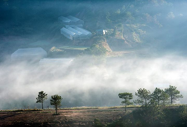 STUNNING BEAUTY OF DA LAT DAWN  (4)