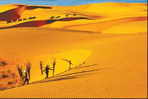 Red The Red Sand Dunes of Mui Ne