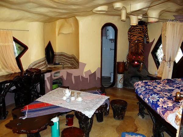 tiger room