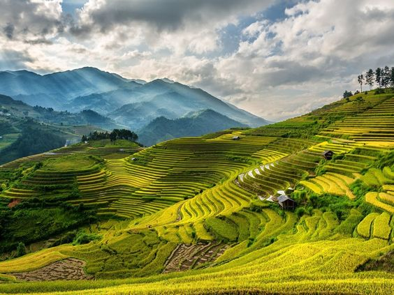Mu Cang Chai is voted this place as the attractive destination in 2020