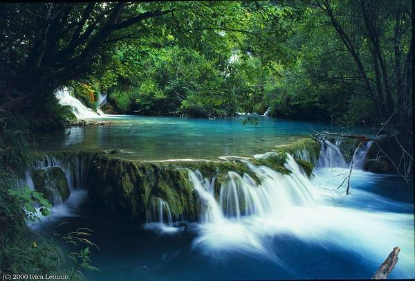 Relax in the swimming pool built upon natural streams