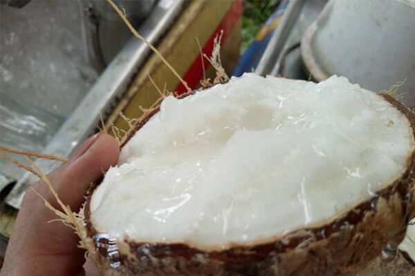 A coconut with wax full of the fruit