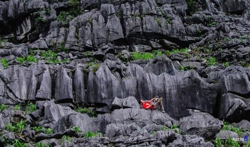 The land of grey rocks